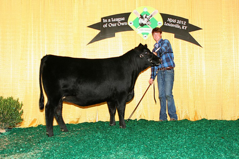 P S Playmate 859 133- Sold as Lot 1 in the 100th Anniversary Penn State Angus Production Sale. Class winner for Marshall McKean at the 2012 National Junior Angus Show.