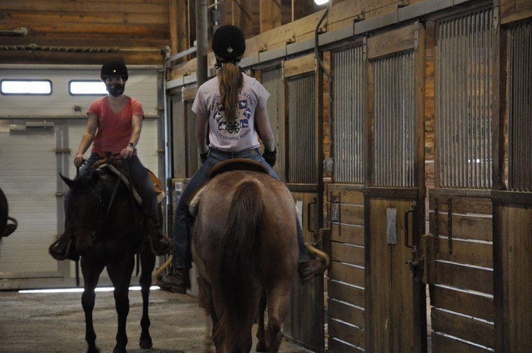 Students in the horse training and handling class work with this year's sale horses. Image: Penn State